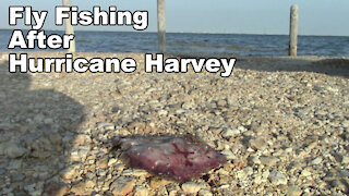 Fishing after Hurricane Harvey! - Gulf of Mexico in Texas - McFly Angler Episode 34