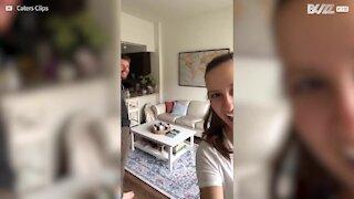 Ce couple construit une cabane de rêve dans son salon