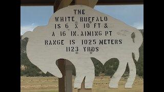 1123 Yard Buffalo