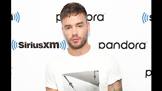 Liam Payne fell in love with Christmas after becoming a dad