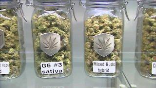 360: The proposal to legalize marijuana