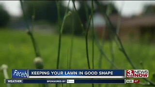 Keeping Your Lawn In Good Shape