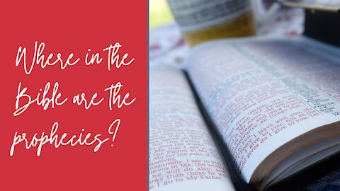 Where in the Bible are the prophecies?