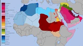 Pulses, Trash Cloud, Middle East Alliance, Mike & Paul 09:23:21