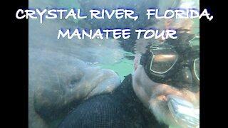 MANATEE TOUR IN BEAUTIFUL CRYSTAL RIVER FLORIDA!