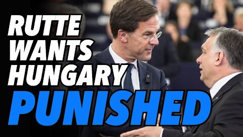 """Dutch PM Rutte wants to bring Orban, """"Hungary to its knees"""""""