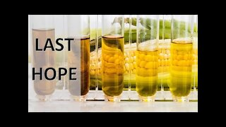 Last Move to Add Food Into the Global Supply