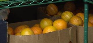 Dietitian talks about summer foods