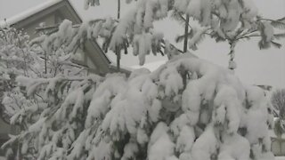 Southern Ontario hit with its first big snowfall of the season