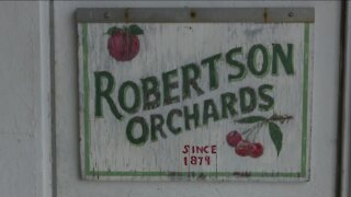 Who is ready for cherry picking this summer in Door County?