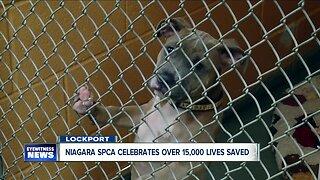 Niagara SPCA celebrates more than 15,000 lives saved