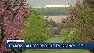 Central Valley leaders call on Newsom to declare a drought emergency