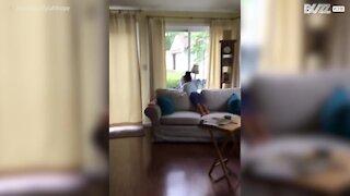 Bimba discute intensamente con l'assistente virtuale Alexa