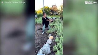 Un chien surexcité fait tomber sa propriétaire dans les buissons