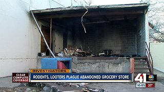 Rodents, looters, squatters plague abandoned grocery store