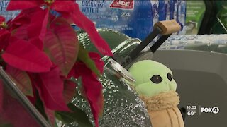 Small businesses struggle ahead of Black Friday