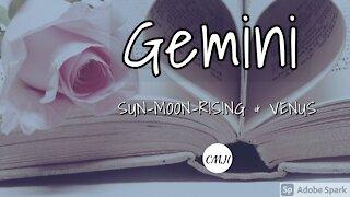 """GEMINI """"THE SOULMATE"""""""