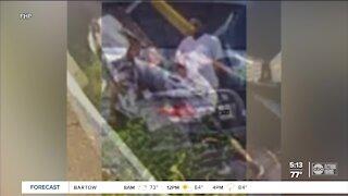 Men carjack Good Samaritans helping them on I-75: FHP