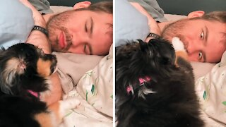 Puppy is done with owner talking over her, covers his mouth