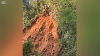 How to Survive a Mudslide