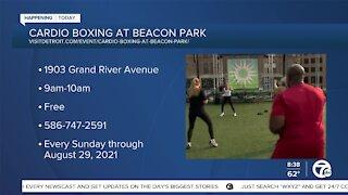 Cardio Boxing at Beacon Park