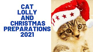 Watch Cat Lolly and the 2021 Christmas preparations at home