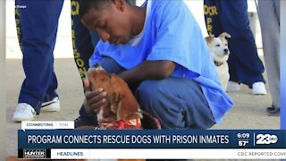 Tehachapi dog rescue Marley's Mutts creating Pawsitive Change for inmates, dogs