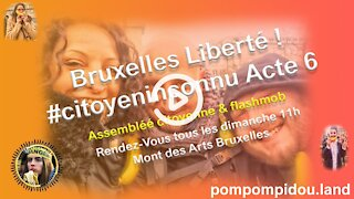 Bruxelles Liberté ! #citoyeninconnu Acte 6