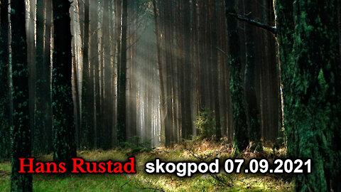 Skogpod 7. september: Det store Øret som hører alt