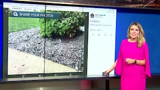 Parts of Northeast Ohio sees Mother's Day snow