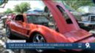 Whiskey roads car show fundraiser