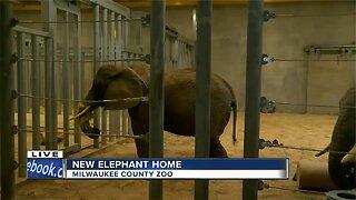 Milwaukee County Zoo opens new elephant exhibit