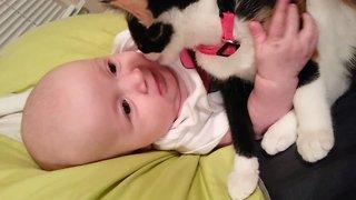 So Sweet – Kitten Loves Baby!