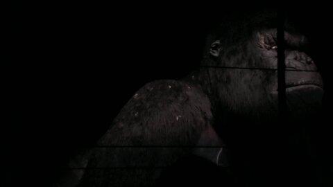 Skull Island Ride Universal Orlando | Funwith5