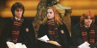 Harry Potter / friends