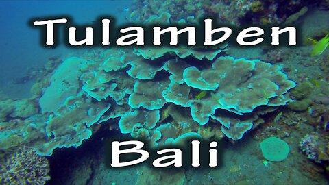 Diving Tulamben, Bali