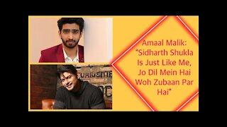 Amaal Malik: &ldquo