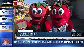 Florida Strawberry Festival kicks off Thursday in Plant City