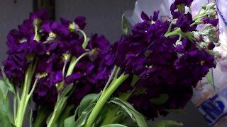 Flowers for seniors in nursing homes