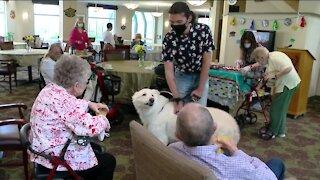 Students living with seniors celebrate graduation
