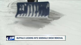 Buffalo looking into sidewalk snow removal