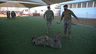 Marine Corps Martial Arts Program: Warrior Ethos