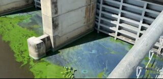Florida Gov. Ron DeSantis 'concerned' with Lake Okeechobee water level