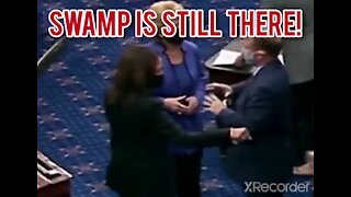 SWAMP IS STILL THERE!