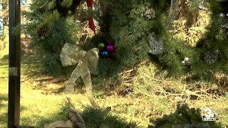 More people are buying real Christmas trees