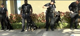 New protection for K-9s