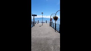 Swiss nature on summer 2020