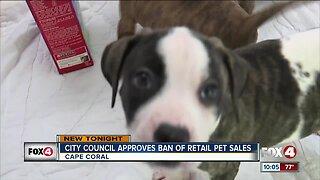 Cape Coral votes to ban retail pet sales