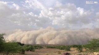 Cell phone footage captures enormous sandstorm