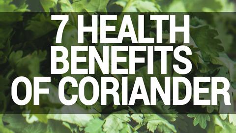 7 Health Benefits Of Coriander
